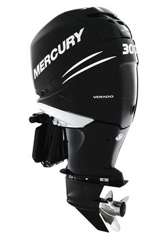 mercury 40 hp outboard owners manual pdf